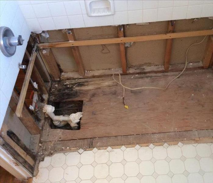 Mold under bathtub