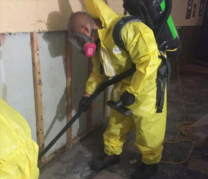 Mold Remediation What Causes Mold Damage?
