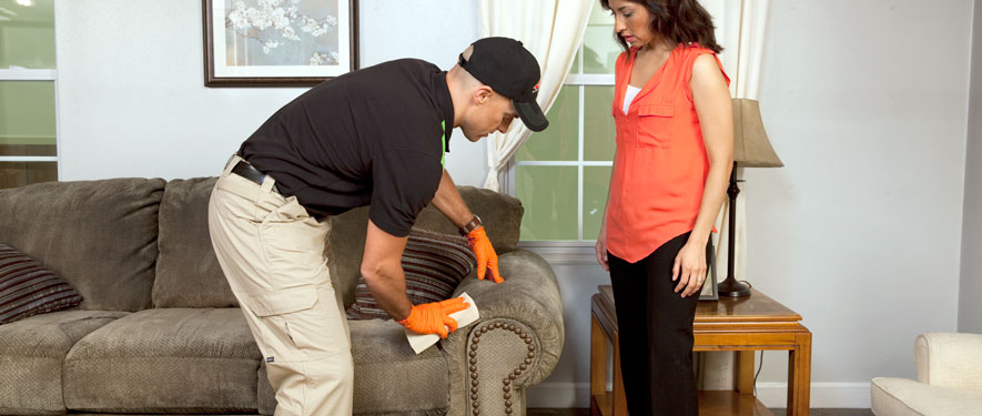 Battle Creek, MI carpet upholstery cleaning