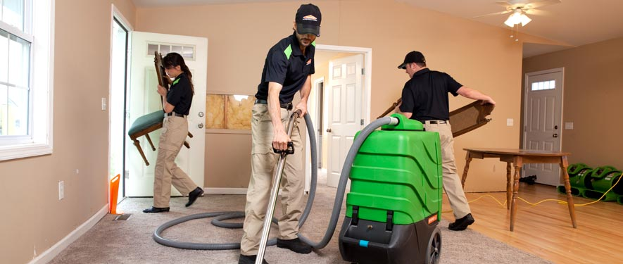 Battle Creek, MI cleaning services